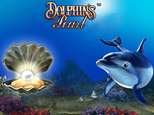 Dolphins Pearl HD online